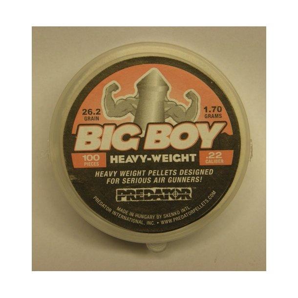 Big Boy 5,5mm 26,2grains 100 stk. æske